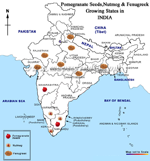Pomegranate, Nutmeg,Fenugreek Growing states in India