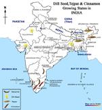 Tejpatta, Dill-seed, Cinnamon Growing states in India