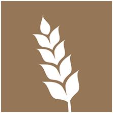 flour-grains-icon