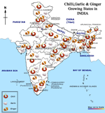 Chilli, Garlic, Ginger Growing states in Iindia